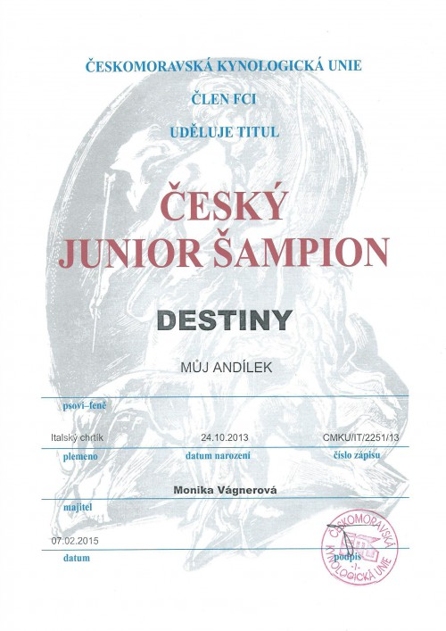 destiny-junior-sampion-.jpg