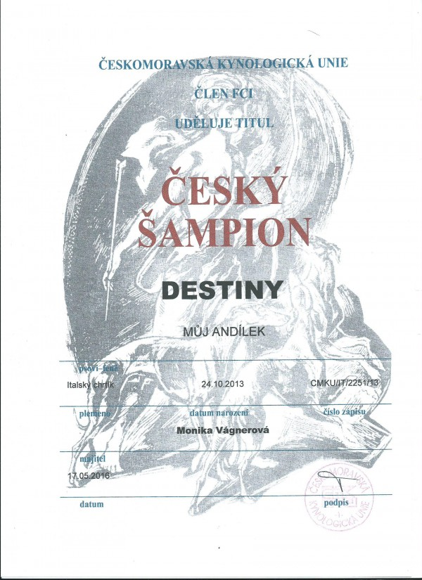 destiny-sampion-.jpg